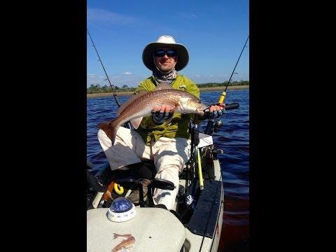 Inshore gags grouper 2013 off steinhatchee on the botto for Steinhatchee fl fishing