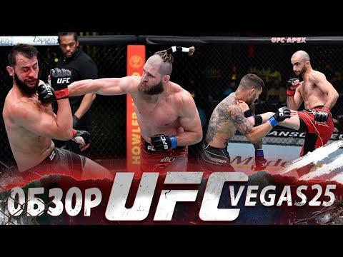 ОБЗОР UFC FN: Доминик Рейес - Иржи Прохазка   Гига Чикадзе, Каб Свонсон, Ион Куцелаба, Двалишвили