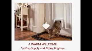 Cat Dog Flaps Fitters Brighton - 07751 717 989