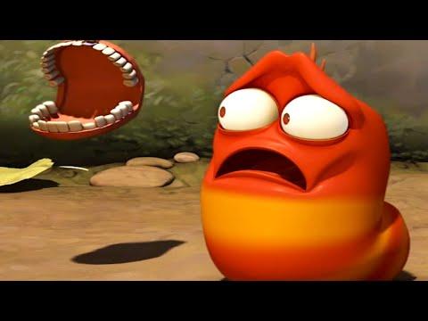 LARVA - THE TOOTH | Cartoons For Children | Larva 2018 | Funny Animated Cartoon |LARVA Official