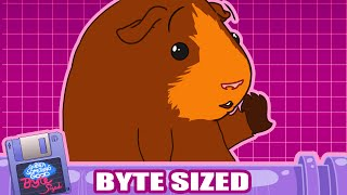 "Guinea Pig Builds ""The Ultimate Transforming Car"" (Guinea Something Good Byte-Sized #17)"