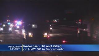 Woman Hit, Killed By Car On Pioneer Bridge