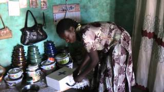 World Health Organization: African  Malaria and Pneumonia Progam