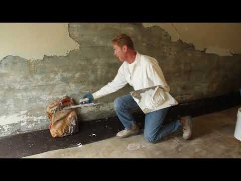Mold or mildew in your home