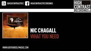 Nic Chagall - What You Need (Marco V Remix)