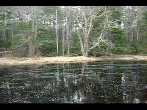 The Mersey River, Nova Scotia