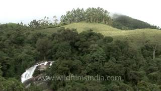 The rolling hills of Munnar in Kerala