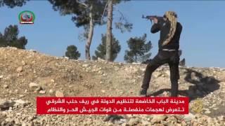 الجيش الحر يؤكد سيطرته على مواقع بمدينة الباب