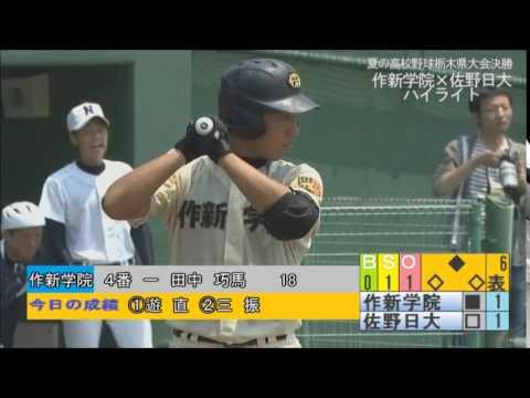 栃木 県 高校 野球