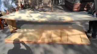Plywood Shaking To Test The Strength Megaplex Full Hardwood Wbp Glue 72 Hours Boiling Test