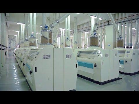 1000t Per Day High Quality Wheat Flour Mill Plant From Diamond Grain Machine