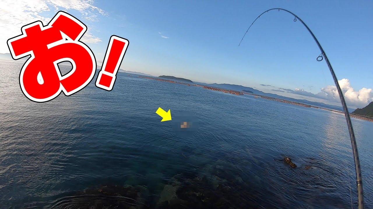沸いた所にルアーを投げたらまさかの魚が食いついた‼