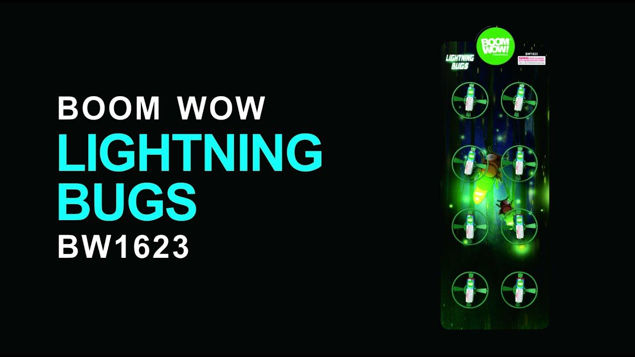 BW1623 Lightning Bugs