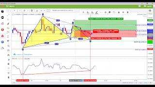 Harmonic Scanner Training with Divergence Lines Aug 2018