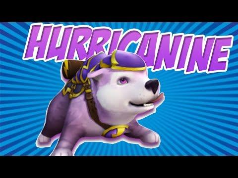 Wizard101: THE NIMBARI DOG! - Hurricanine Pet Showcase