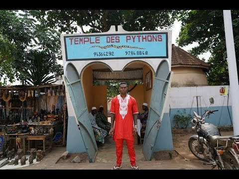 Live  Love  Africa: Tour of the Temple of Pythons