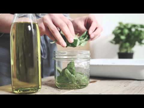 Simple Solutions How To Preserve Fresh Basil