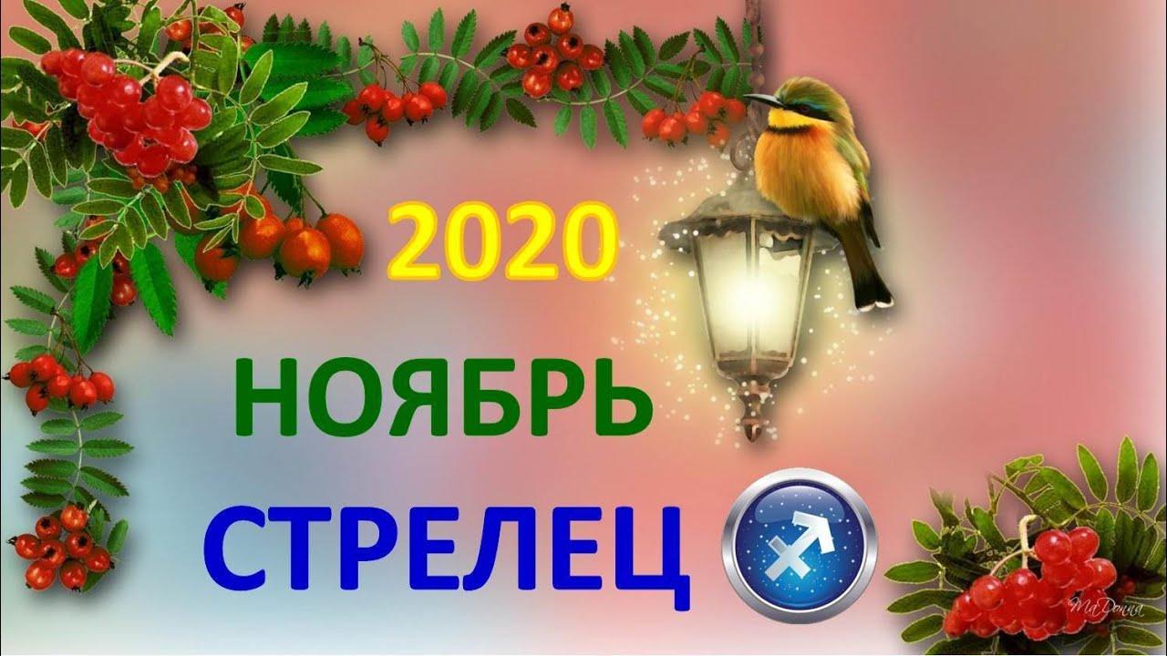 ♐ СТРЕЛЕЦ. ❄️ НОЯБРЬ 2020 г. 🌌 4 сферы жизни + подсказки АНГЕЛОВ 👉 Таро прогноз