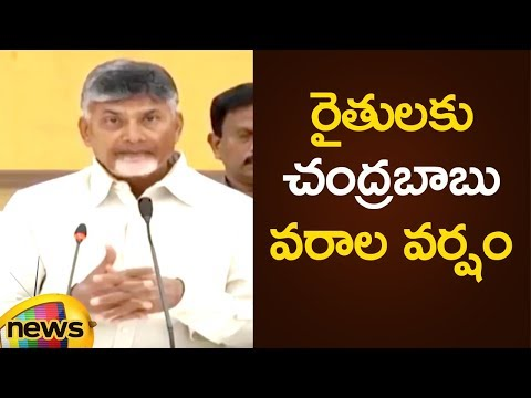 CM Chandrababu Naidu Announces Special Schemes In AP | AP Political Updates |Mango News