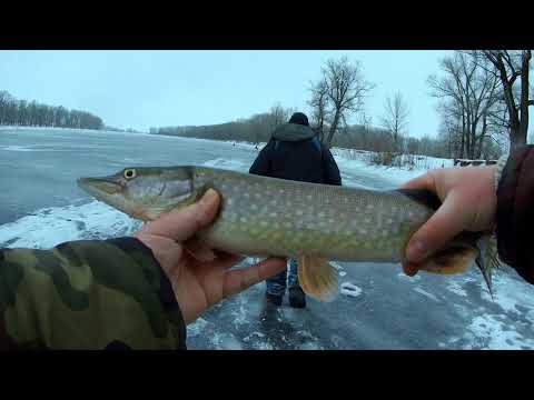 зимняя рыбалка на плотву - 2018-01-04 09:24:12