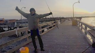 Winter Bay Herring Fishing - WALKING THE DOG with Sabiki Jigs