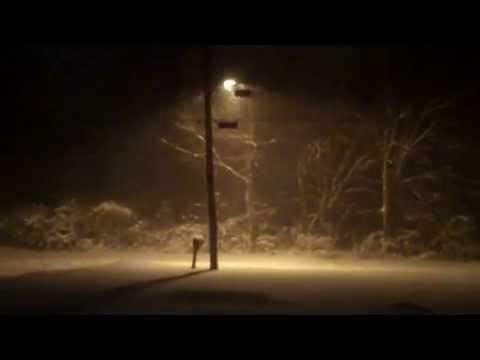 Maryland Blizzard 2010