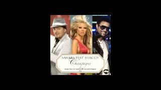 SAHARA ft SHAGGY - CHAMPAGNE - Balkan Version MP3 BASS - Summer hit !!! NEW 2016