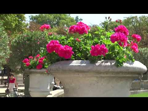 Luxembourg Garden (Paris, France)