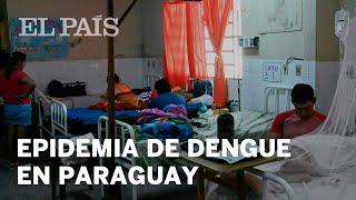 EPIDEMIA de DENGUE afecta a PARAGUAY, incluido el PRESIDENTE