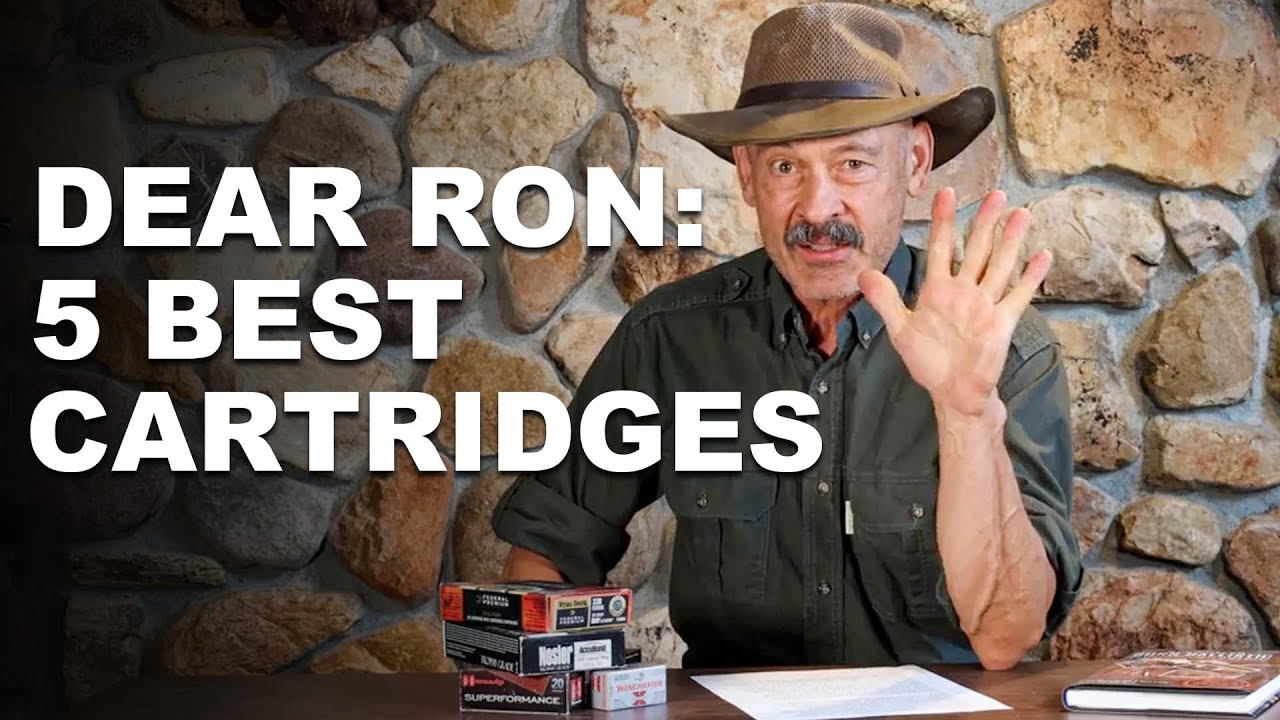 The 5 Best Cartridges