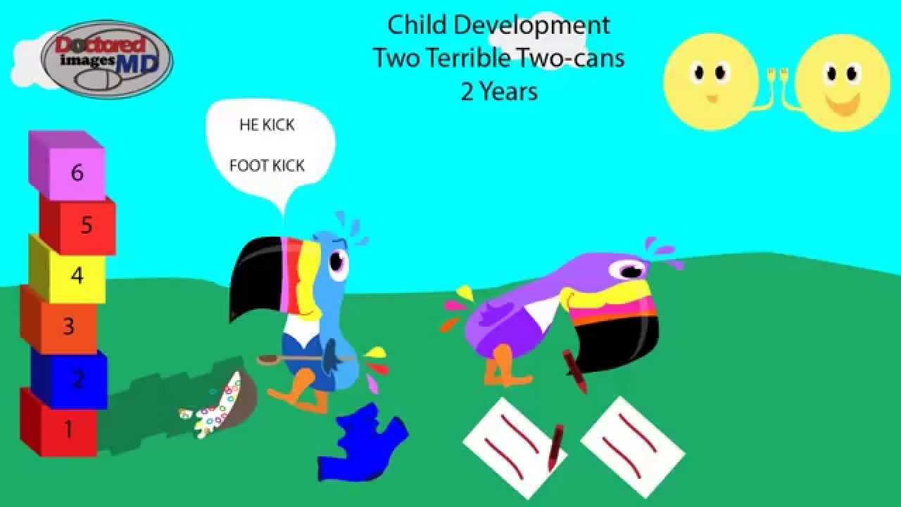 Child Developmental Milestones Two Terrible Two cans