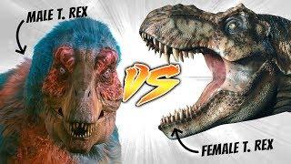 Male T. rex VS Female T. rex [Who Would Win?]