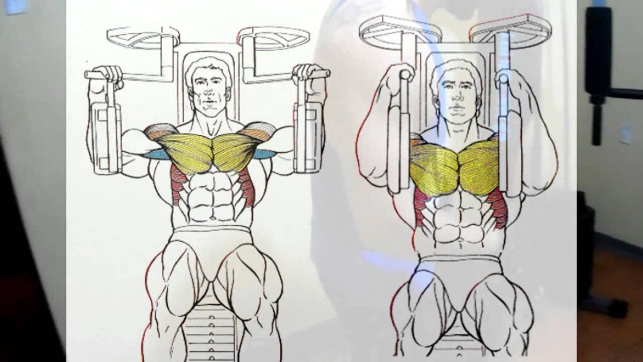 ejercicios de pecho con maquina multifuncional