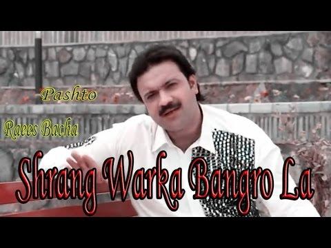 Raees Bacha - Shrang Warka Bangro La