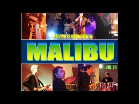 MALIBU vol 24  completo  silvio ryhr carlos casares  bs as argentina 2396619386
