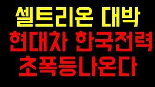 한국전력 셀트리온 현대…