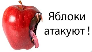 Яблоки атакуют ! ( Swords and Souls )