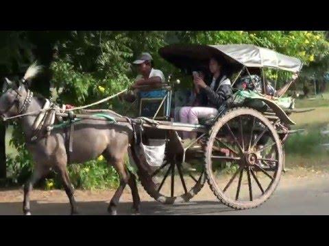 Horse Cart experience in Bagan,Myanmar.