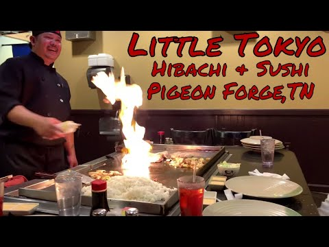 Little Tokyo Hibachi And Sushi - Pigeon Forge, TN