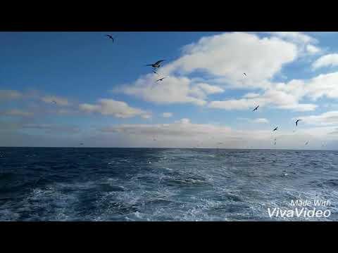 South Atlantic ocean Off Namibia coast