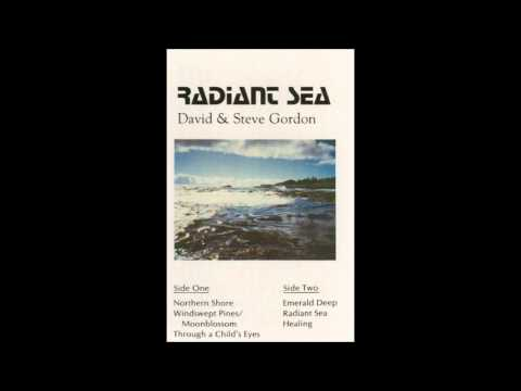 David & Steve Gordon - Windswept Pines / Moonblossom