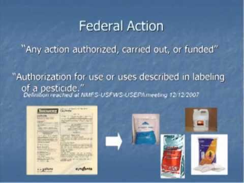 Assessing Risk of US EPA Authorized Pesticide Uses to ESA Listed Pacific Salmonids