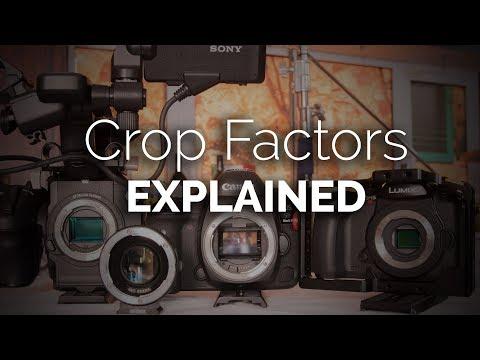 Explaining Crop Factors