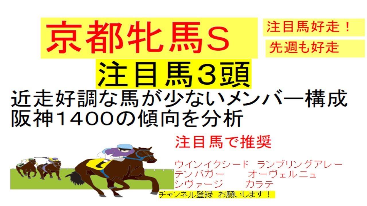 ステークス 京都 牝馬