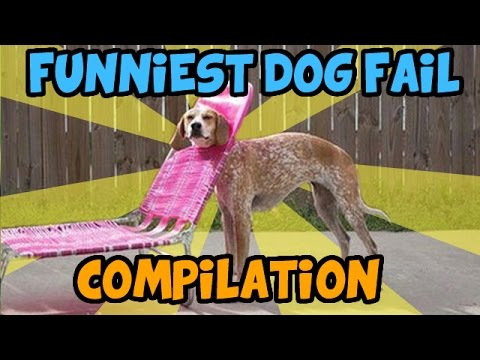 BEST DOG FAIL COMPILATION