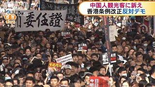 中国人観光客に訴え 逃亡犯条例の撤回求めデモ(19/07/08)