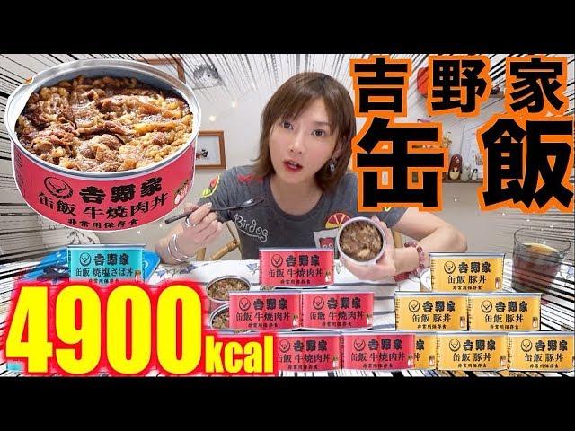【大食い】[吉野家缶飯]吉野家の味が缶詰に!美味しすぎて非常時に食べてる場合じゃない![牛焼肉丼,豚丼,焼き塩サバ丼]18缶[4896kcal]【木下ゆうか】