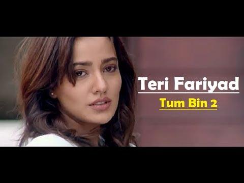 Teri Fariyad Tum Bin 2 Lyrics Translation - Jagjit Singh - Rekha Bhardwaj