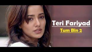 teri-fariyad-tum-bin-2-lyrics-translation-jagjit-singh-rekha-bhardwaj