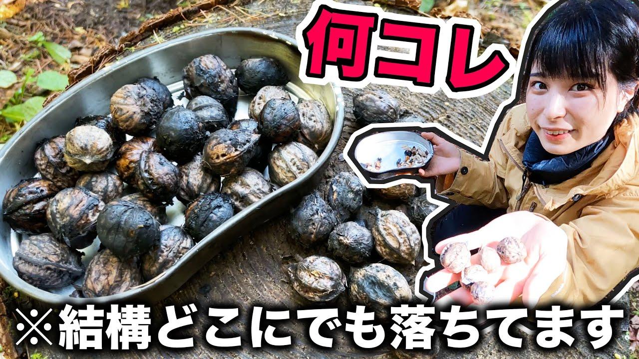 【田舎暮らし】そこらへんに落ちてた腐った実を煎って食べてみたら…【後編】